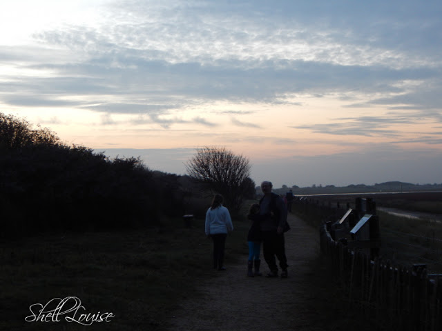 Donna Nook Nature Reserve - Evening sky