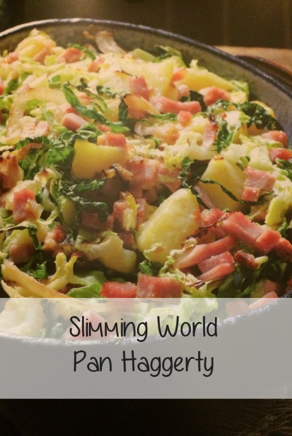 Pan Haggerty Slimming World Recipe Shell Louise