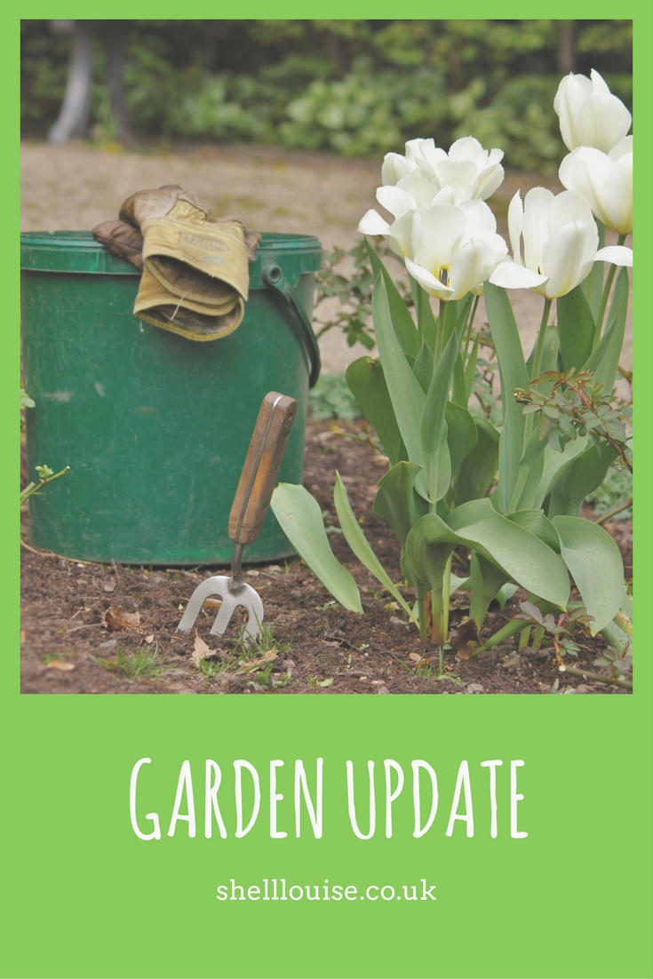 Year Of The Garden - Update