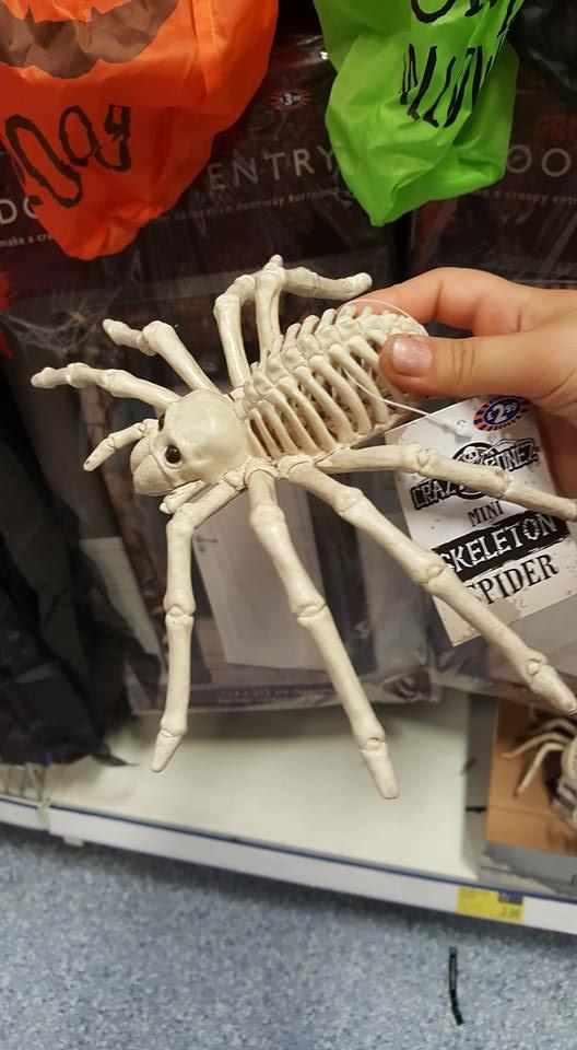 Spider decoration - Halloween plans