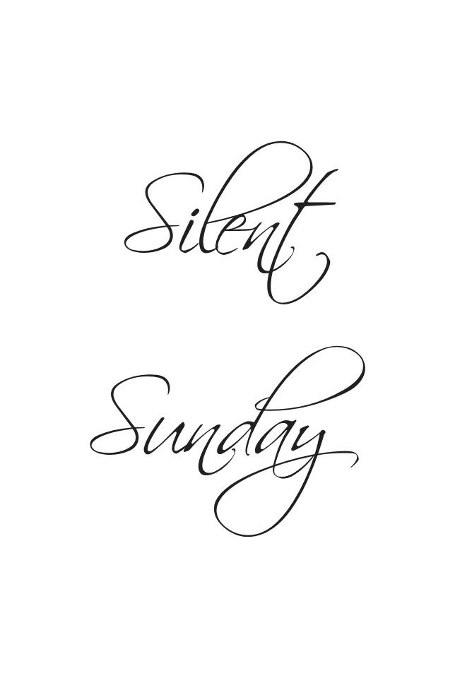 Silent Sunday text