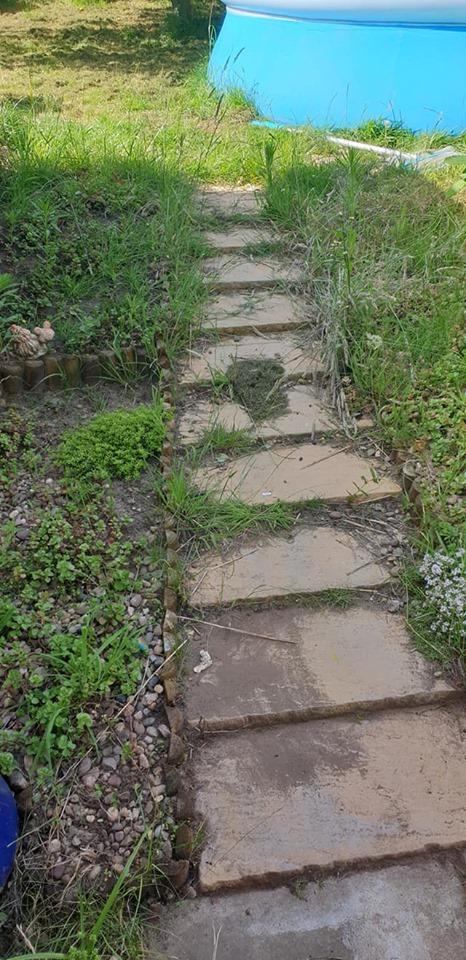 steps before weeding