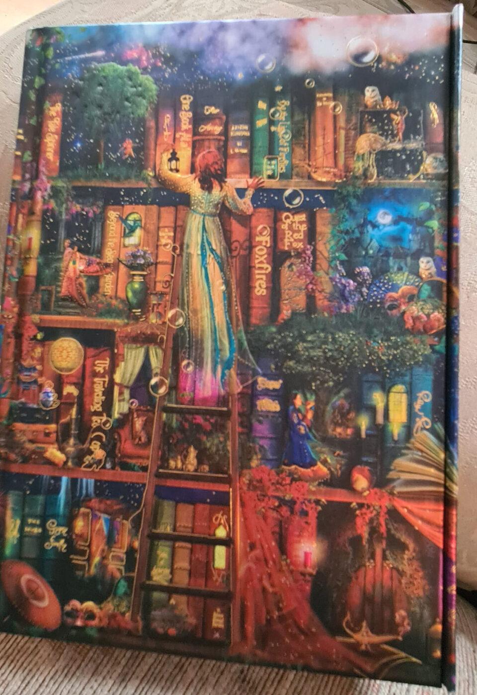 Treasure Hunt Bookcase notebook
